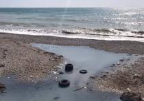 Крым и Краснодарский край могут стать непригодными для отдыха?