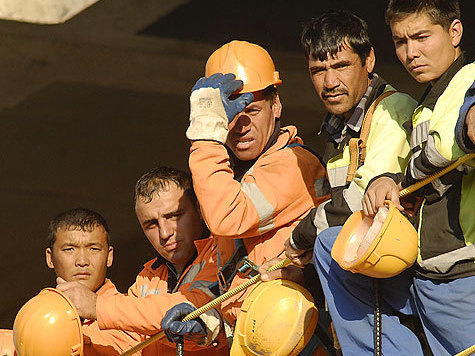 Животноводческий комплекс в области строили нелегальные мигранты.